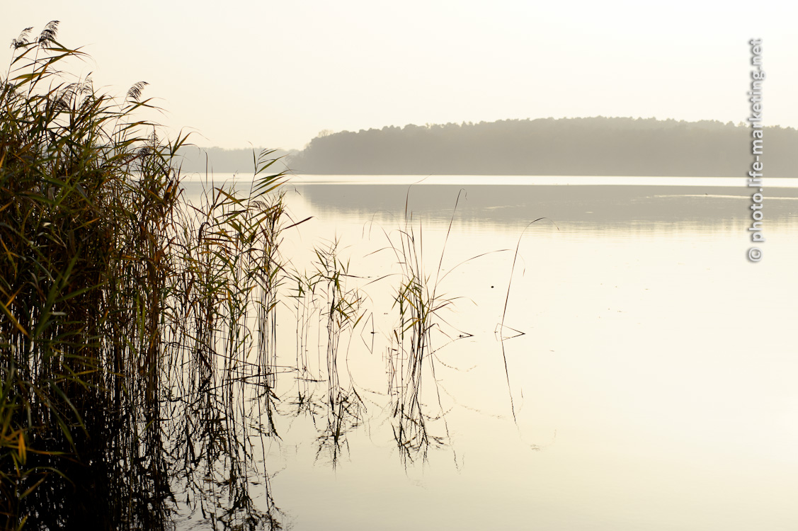 Herbstsonne am See